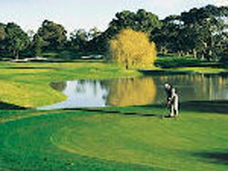 Brighton Public Golf Course Melbourne - Brighton Golf Club Membership, Links, Academy - Brighton Golf Course Dendy st Victoria